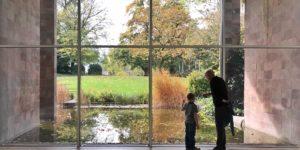 Die Fondation Beyeler feiert ihr 20. Jubiläum. Das Museum präsentiert sich dabei als moderne Wunderkammer, die neue Blickwinkel ermöglicht.