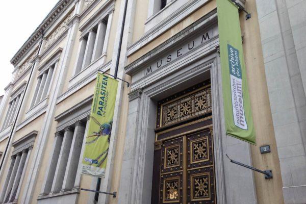 """Die Ausstellung """"Parasiten: Life Undercover"""" im Naturhistorischen Museum Basel nimmt die Besucher mit in eine faszinierende Welt."""