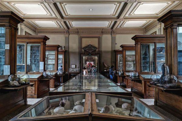 Benannt ist das Museum nach Pieter Teyler van der Hulst (1702-1778), einem Bankier sowie Tuch- und Seidenhersteller aus Haarlem