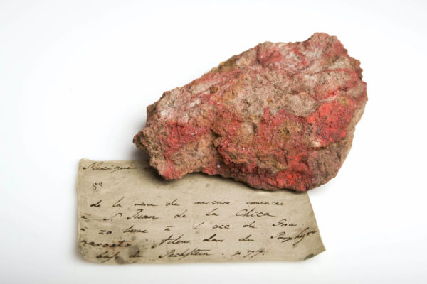 """In der Publikation """"Wissensdinge"""" stellt das Museum für Naturkunde Berlin ungewöhnliche Sammlungsobjekte und die Geschichten dahinter vor."""