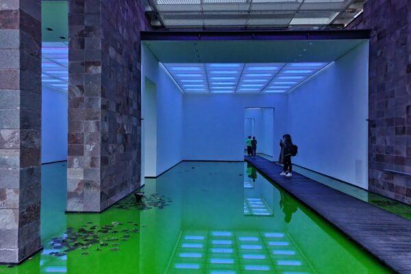 Auf Stegen aus dunklem Holz können Besucher durch die mit fluoreszierendem Wasser gefluteten Museumsräume gehen.