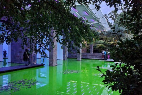 Bei Tag schimmert das Neon-Grün eingefärbte Wasser im Licht; in der Nacht entwickelt sich die Installation zu einer fluoreszierenden Landschaft.