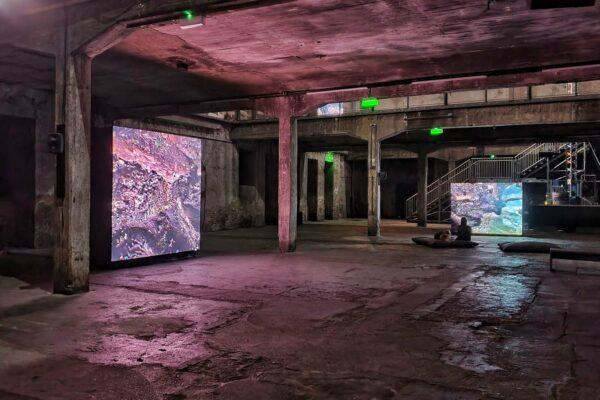 """Mit der Installation """"Berl-Berl"""" in der Halle am Berghain imaginiert Jakob Kudsk Steensen Berlin als 10.000 Jahre alte Sumpflandschaft."""